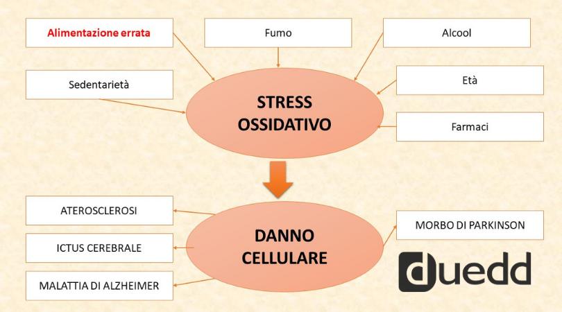 Lo sapevate che l'alimentazione puo' influenzare lo stress ossidativo?